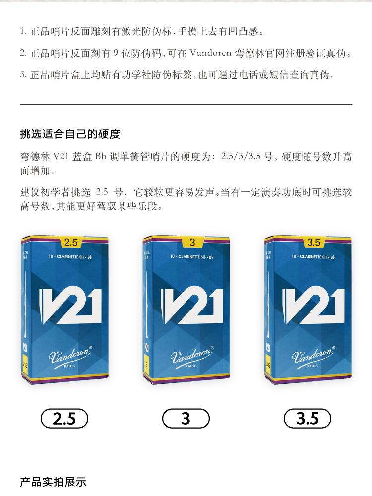 V21-Bb-PC端_07.jpg